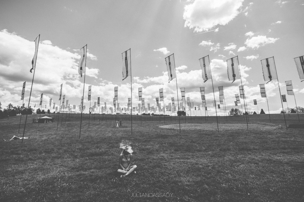 Mysteryland 2014 (Photo- Julian Cassady)-61