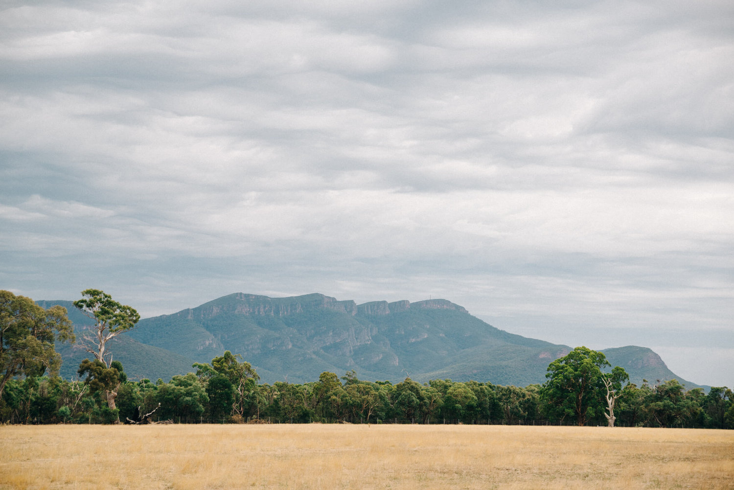 The lovely scenes of the Grampians mountain range. Photo by Arianna Leggiero